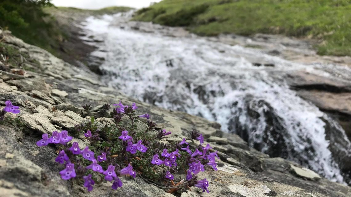 La musica delle Cento Cascate nei Monti della Laga